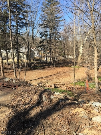 Morris Twp. Residential Lots & Land For Sale: 189 Sussex Ave