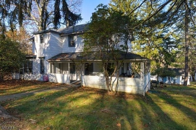Morristown Town, Morris Twp. Single Family Home For Sale: 179 189 Sussex Ave