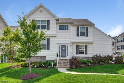 Mount Olive Twp. Condo/Townhouse For Sale: 119 Sowers Dr