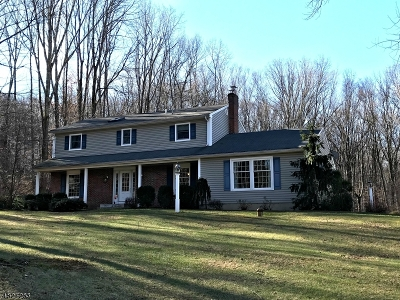 Chester Single Family Home For Sale: 19 Delwood Rd