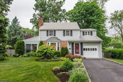 Westfield Town NJ Single Family Home For Sale: $645,000