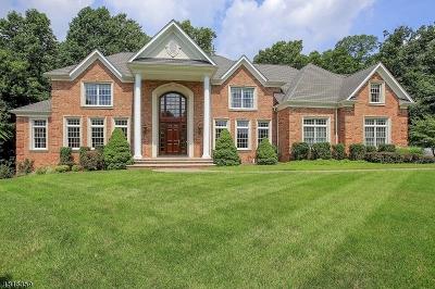 Warren Twp. Single Family Home For Sale: 37 Geiger Ln