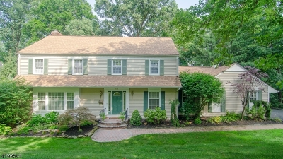 New Providence Single Family Home For Sale: 69 Colchester Rd