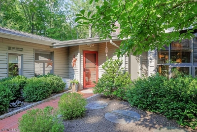 Montgomery Twp. Single Family Home For Sale: 1085 Cherry Hill Rd