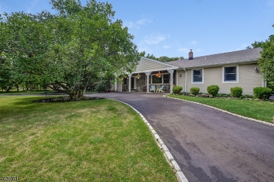 Scotch Plains Twp. Single Family Home For Sale: 4 Kevin Rd