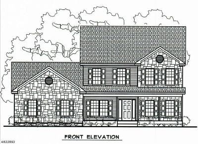 Delaware Twp. Single Family Home For Sale: 525 Sergeantsville Rd