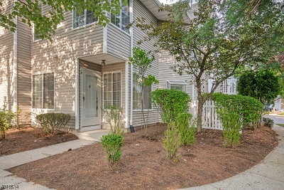 Bedminster Twp. Condo/Townhouse For Sale: 18 Tory Ct