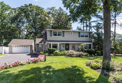 Wyckoff Twp. Single Family Home For Sale: 194 Godwin Ave