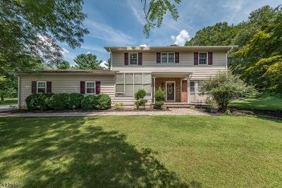 Flemington Boro, Raritan Twp. Single Family Home For Sale: 13 Hickory Trl