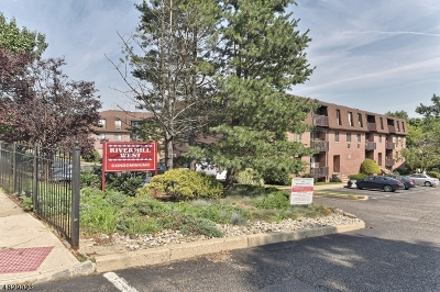 Belleville Twp. Condo/Townhouse For Sale: 740 Mill St Unit E-11 #E-11