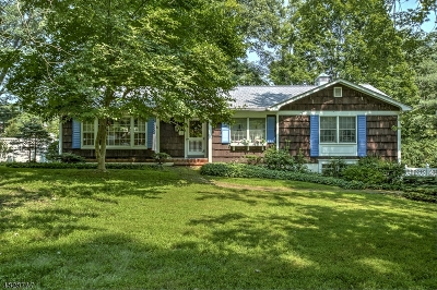 Mendham Twp. Single Family Home For Sale: 13 Hilltop Cir