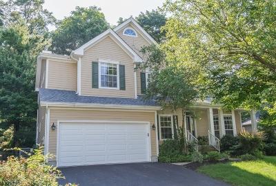 Bernards Twp. Single Family Home For Sale: 188 Smoke Rise Rd