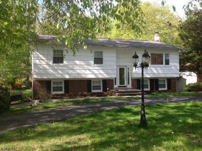 Roxbury Twp. Single Family Home For Sale: 553 Rogers Dr