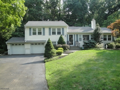 Florham Park Boro Single Family Home For Sale: 50 Afton Dr