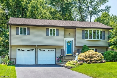 Montville Twp. NJ Single Family Home For Sale: $475,000