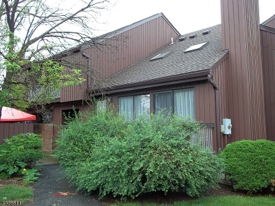 Hillsborough Twp. NJ Rental For Rent: $2,200