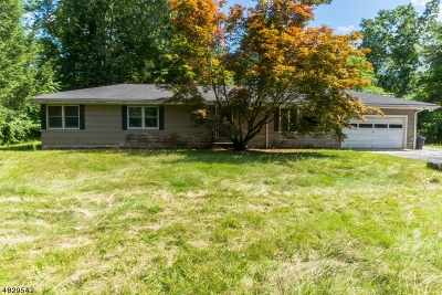 Sussex County Single Family Home For Sale: 6 Lewmay Dr