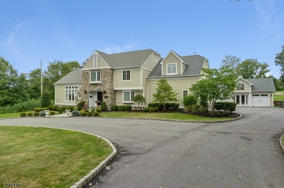 Florham Park Boro Single Family Home For Sale: 73 E Madison Ave