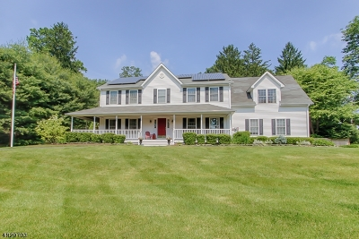 Randolph Twp. Single Family Home For Sale: 49 South Rd