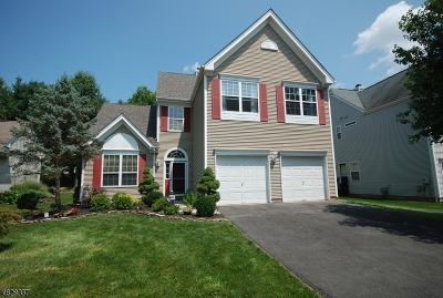 Readington Twp. Single Family Home For Sale: 16 Hay Barrick Rd