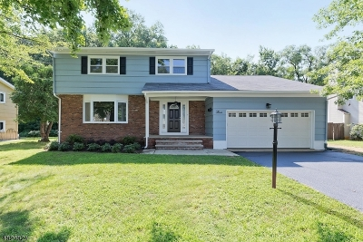 Cranford Twp. Single Family Home For Sale: 3 Grant St
