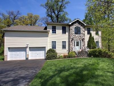 Berkeley Heights Single Family Home For Sale: 50 Eleni Way