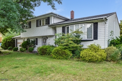 Springfield Single Family Home For Sale: 3 S Gate
