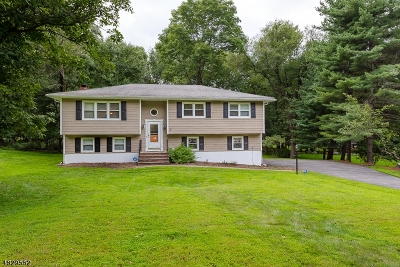 Randolph Twp. Single Family Home For Sale: 4 Black Birch Dr