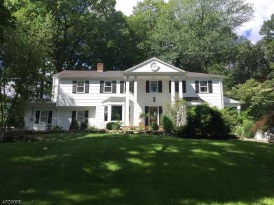 Flemington Boro, Raritan Twp. Single Family Home For Sale: 121 Old Clinton Rd