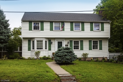 Springfield Single Family Home For Sale: 128 Short Hills Ave