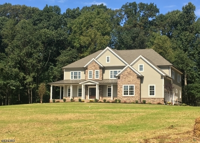 Montgomery Twp. Single Family Home For Sale: 268 Sunset Rd