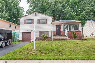Hillside Twp. Single Family Home For Sale: 117 Eastern Pky
