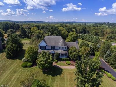 Clinton Town, Clinton Twp. Single Family Home For Sale: 2 Trubek Farm Rd