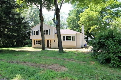 Randolph Twp. Rental For Rent: 266 Dover-Chester Rd
