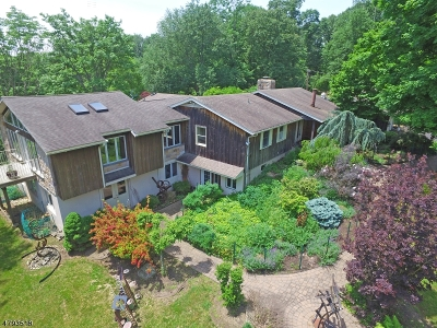 Franklin Twp. Single Family Home For Sale: 225 Millbrook Rd