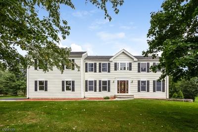Flemington Boro, Raritan Twp. Single Family Home For Sale: 8 Montgomery Dr