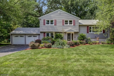 West Caldwell Twp. Single Family Home For Sale: 41 Aldom Cir