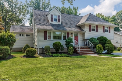 Westfield Town NJ Single Family Home For Sale: $669,000