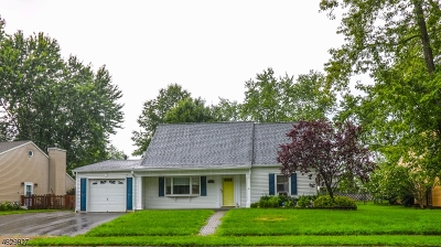 Mount Olive Twp. Single Family Home For Sale: 147 Clover Hill Dr