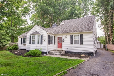 Parsippany-Troy Hills Twp. Single Family Home For Sale: 8 Roosevelt Ave