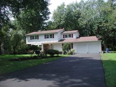 Hillsborough Twp. Single Family Home For Sale: 443 S Woods Rd