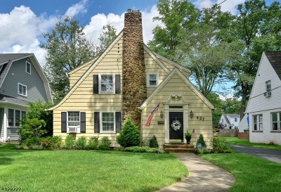 Westfield Town NJ Single Family Home For Sale: $739,000