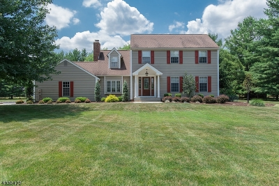 Readington Twp. Single Family Home For Sale: 3 Sunset View Rd