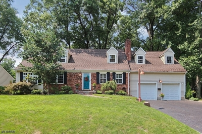 Westfield Town NJ Single Family Home For Sale: $825,000