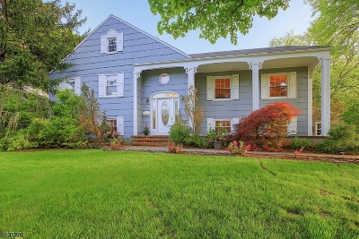 Westfield Town NJ Single Family Home For Sale: $849,999