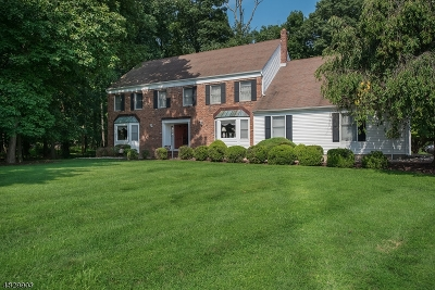 Readington Twp. Single Family Home For Sale: 7 Flintlock Rd