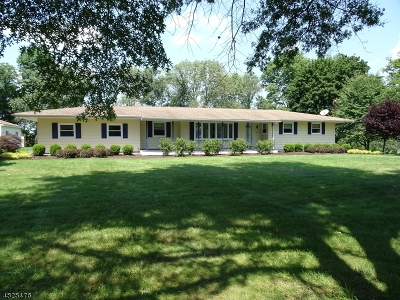 Alexandria Twp. Single Family Home For Sale: 1444 County Rd 519