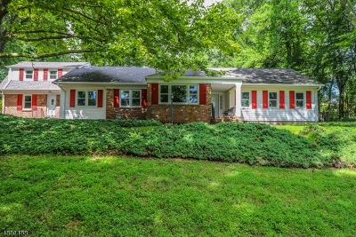 Bernardsville Boro Single Family Home For Sale: 121 Round Top Rd