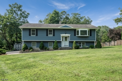 Mount Olive Twp. Single Family Home For Sale: 2 Robert St