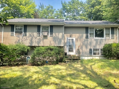 Montville Twp. NJ Single Family Home For Sale: $250,000